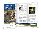 0000083635 Brochure Template