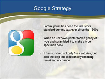 0000083635 PowerPoint Templates - Slide 10