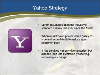 0000083635 PowerPoint Templates - Slide 11