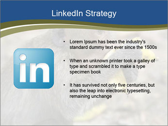 0000083635 PowerPoint Templates - Slide 12