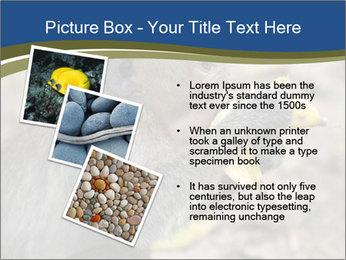 0000083635 PowerPoint Template - Slide 17