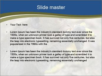 0000083635 PowerPoint Template - Slide 2