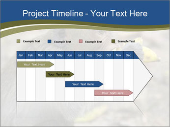 0000083635 PowerPoint Templates - Slide 25