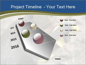 0000083635 PowerPoint Template - Slide 26