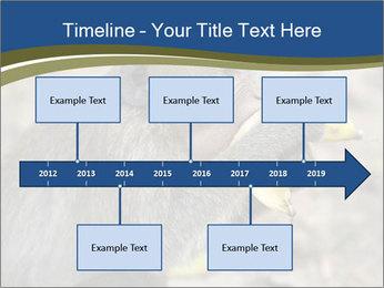 0000083635 PowerPoint Template - Slide 28