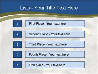 0000083635 PowerPoint Templates - Slide 3