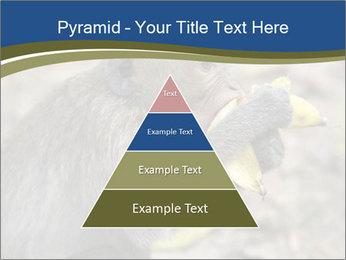 0000083635 PowerPoint Template - Slide 30