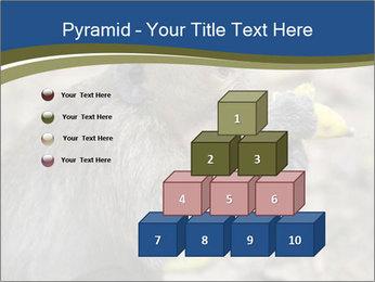 0000083635 PowerPoint Template - Slide 31