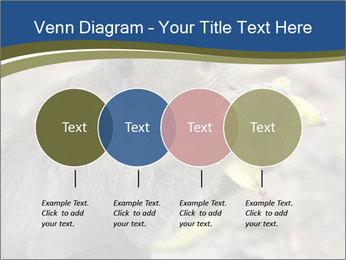 0000083635 PowerPoint Template - Slide 32