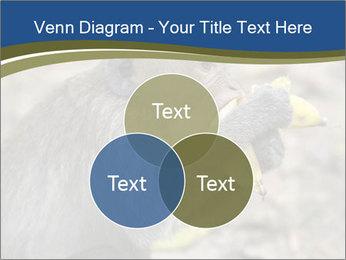 0000083635 PowerPoint Template - Slide 33