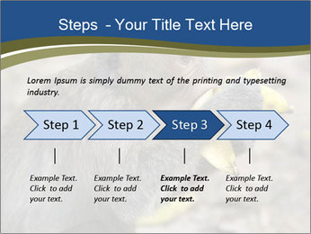 0000083635 PowerPoint Template - Slide 4