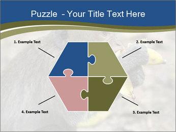 0000083635 PowerPoint Template - Slide 40