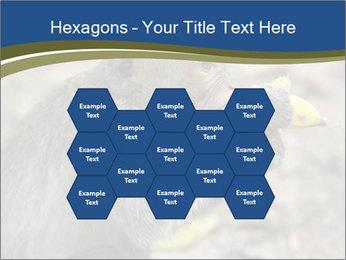 0000083635 PowerPoint Template - Slide 44