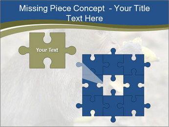 0000083635 PowerPoint Template - Slide 45