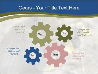 0000083635 PowerPoint Template - Slide 47