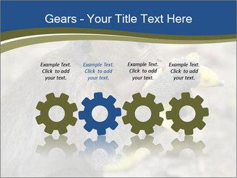 0000083635 PowerPoint Templates - Slide 48