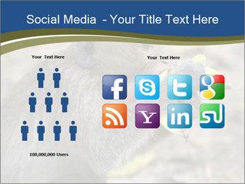 0000083635 PowerPoint Templates - Slide 5
