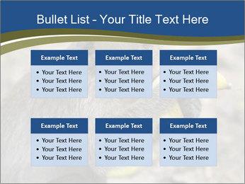 0000083635 PowerPoint Template - Slide 56