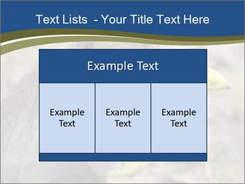 0000083635 PowerPoint Template - Slide 59
