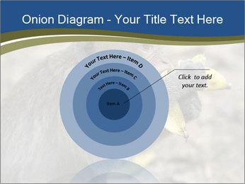 0000083635 PowerPoint Template - Slide 61