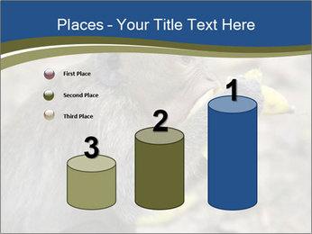 0000083635 PowerPoint Template - Slide 65