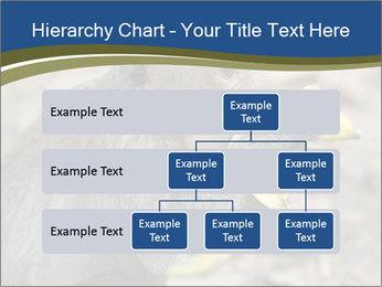 0000083635 PowerPoint Templates - Slide 67