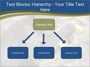 0000083635 PowerPoint Template - Slide 69