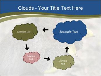0000083635 PowerPoint Template - Slide 72
