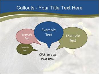 0000083635 PowerPoint Template - Slide 73