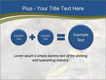 0000083635 PowerPoint Template - Slide 75