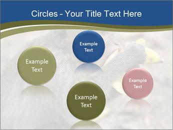 0000083635 PowerPoint Template - Slide 77