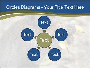 0000083635 PowerPoint Templates - Slide 78