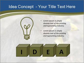 0000083635 PowerPoint Template - Slide 80