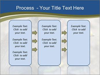 0000083635 PowerPoint Template - Slide 86