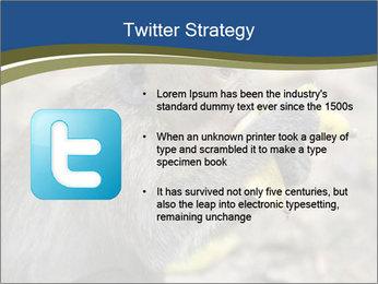 0000083635 PowerPoint Template - Slide 9