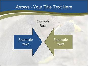 0000083635 PowerPoint Template - Slide 90