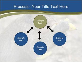 0000083635 PowerPoint Template - Slide 91