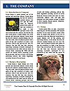 0000083635 Word Template - Page 3
