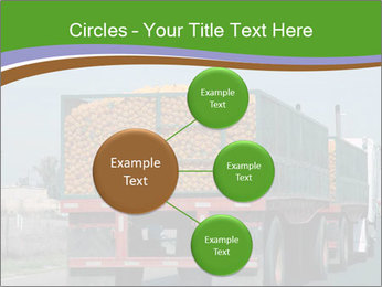 0000083637 PowerPoint Template - Slide 79