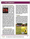 0000083639 Word Template - Page 3
