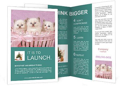 0000083641 Brochure Templates