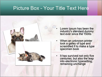 0000083641 PowerPoint Templates - Slide 20