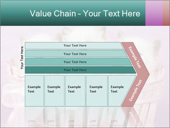 0000083641 PowerPoint Template - Slide 27