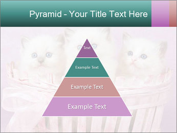0000083641 PowerPoint Template - Slide 30