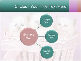 0000083641 PowerPoint Template - Slide 79