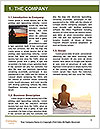 0000083643 Word Template - Page 3