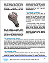 0000083650 Word Template - Page 4