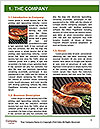0000083654 Word Template - Page 3