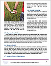 0000083661 Word Template - Page 4