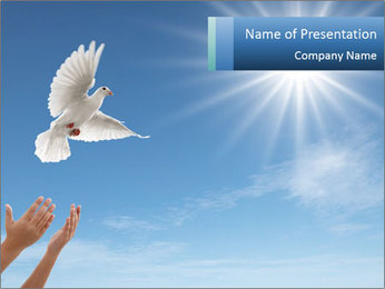 0000083662 PowerPoint Template